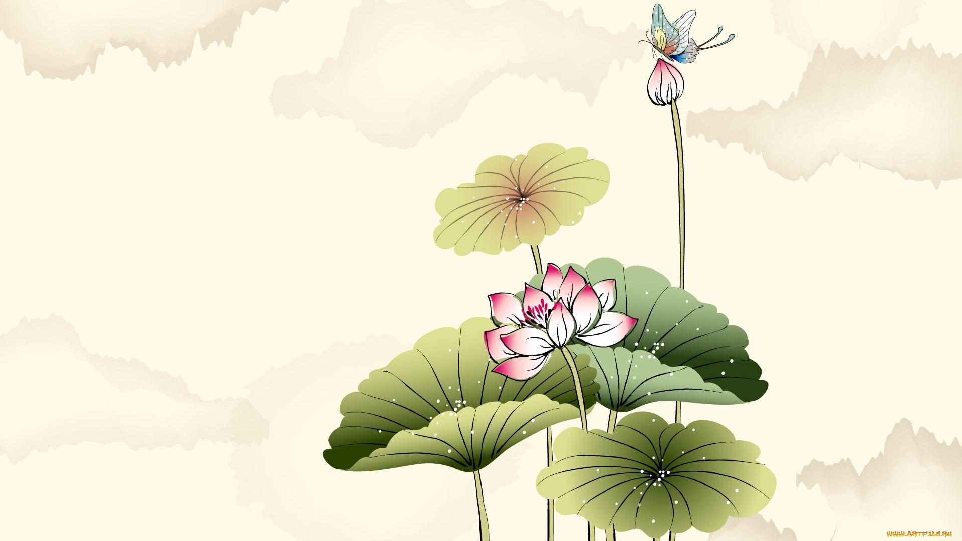 рисованные, цветы, бабочки